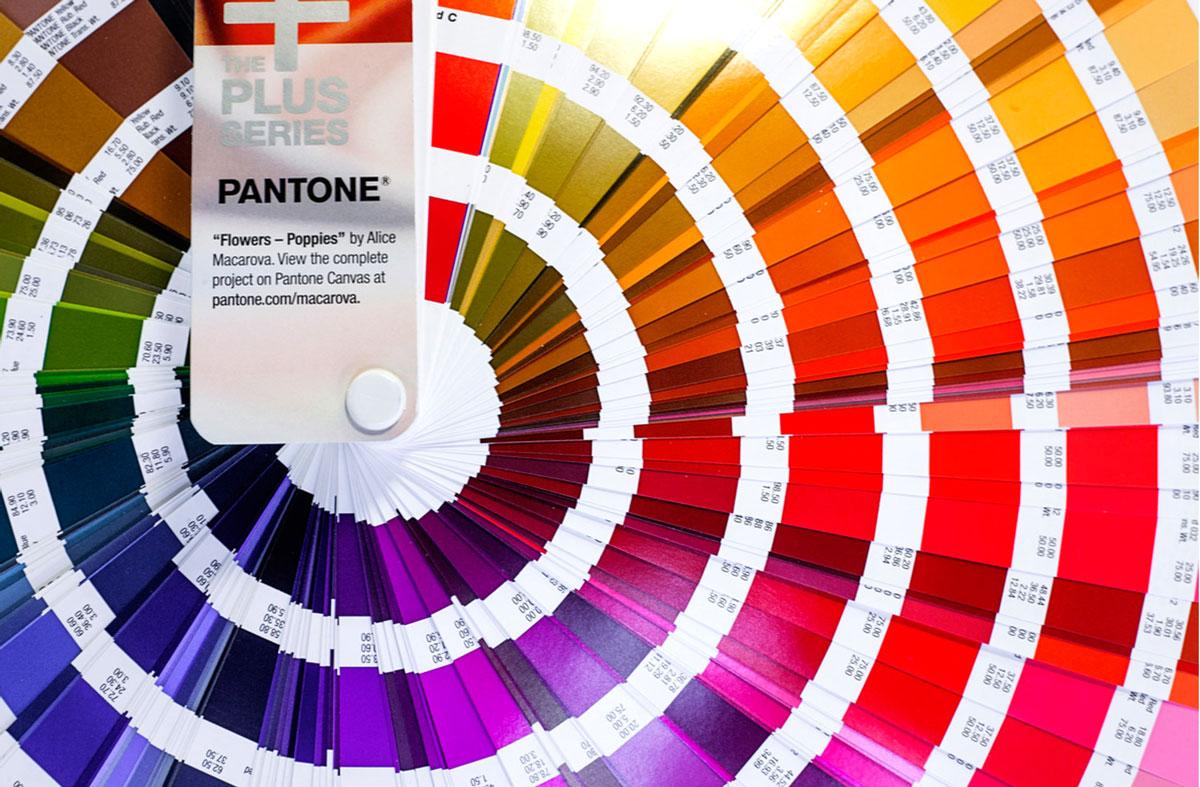 Пантонный веер для печати фирменных цветов